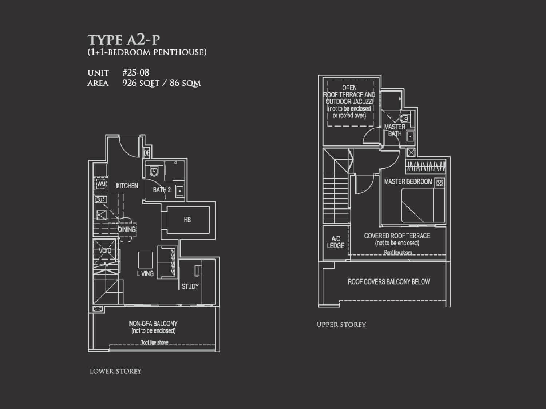 Type A2-P